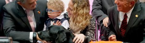 Contribuye UVM al bienestar animal al eliminar el sufrimiento innecesario de especies en su programa académico