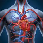 Padecimientos cardiovasculares, causa número uno de muerte en el mundo