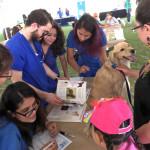 """El Hospital Veterinario UVM asigna """"Raza única"""" a perros de albergue para facilitar su adopción"""